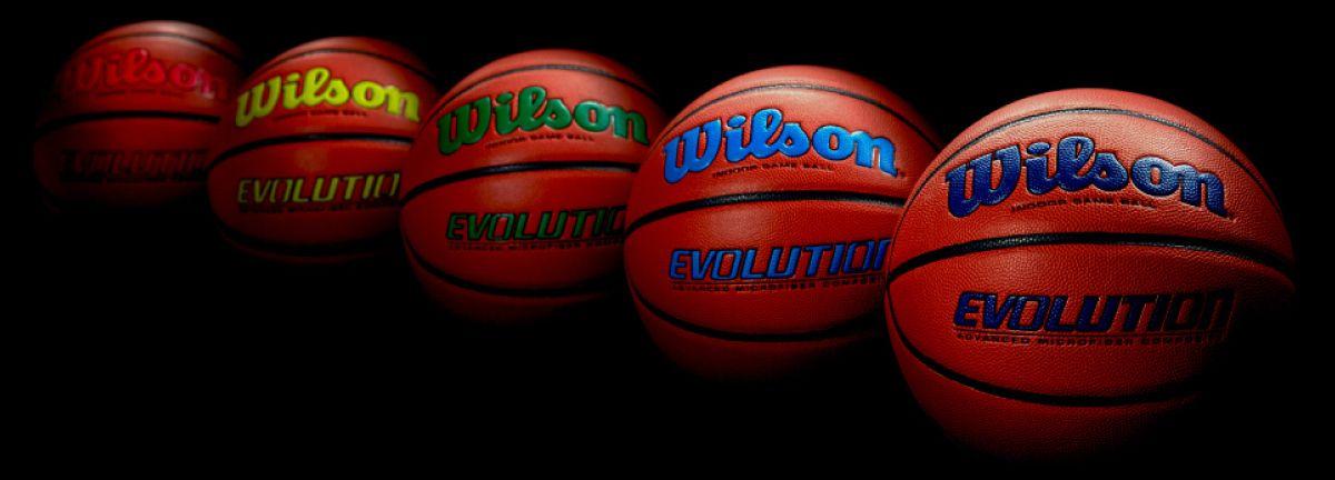 468474a6f6a Wilson Evolution Basketball (28.5