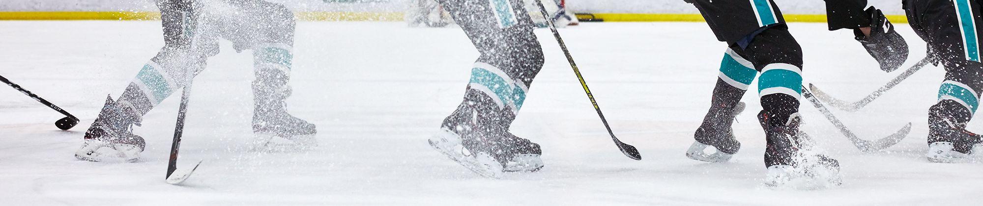 Image result for banner picture of skates