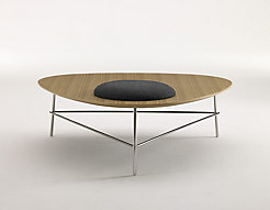 Triscape Coffee Table with Seating Disc