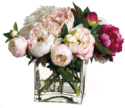 Peony Floral in Vase