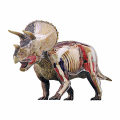 4D Master 4D Vision Triceratops Anatomy Model