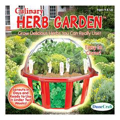 Dunecraft Dome Terrarium - Culinary Herb Garden
