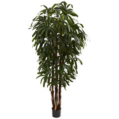 Nearly Natural 6-ft. Raphis Palm Tree