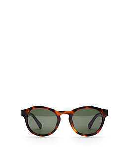 Collin Sunglasses