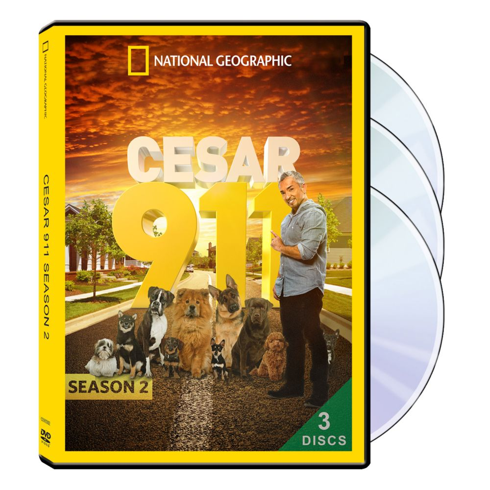 Cesar 911 Season Two 3-DVD Set