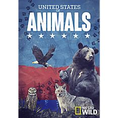 United States of Animals DVD-R
