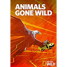 Animals Gone Wild Season Three DVD-R