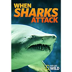 When Sharks Attack Season Three DVD-R