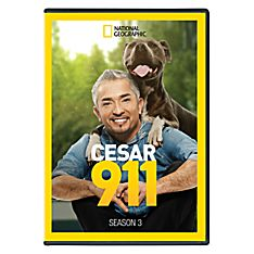 Cesar 911 - Season 3 DVD-R