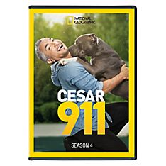 Cesar 911 - Season 4 DVD-R