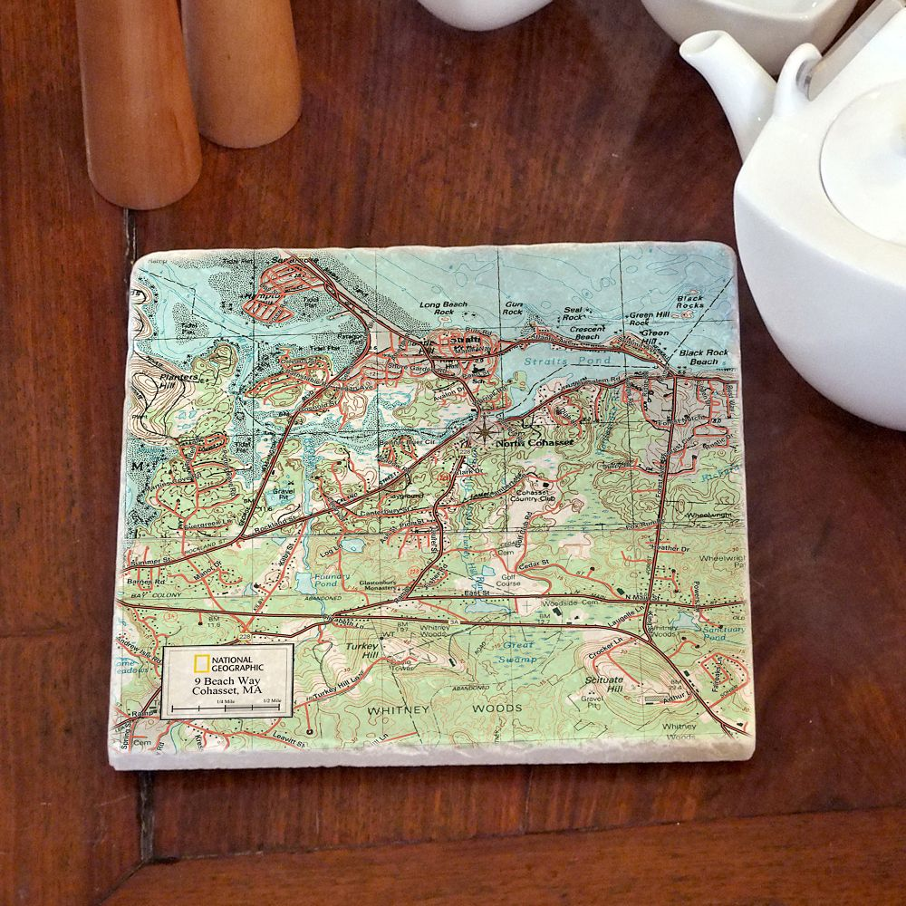 National Geographic ''My Town'' Trivet