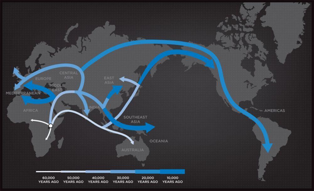 Geno 2.0 Next Generation Genographic DNA Ancestry Kit, International Delivery