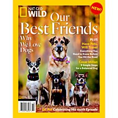Nat Geo Wild: Cats and Dogs Special Issue