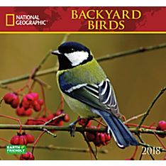 2018 National Geographic Backyard Birds Wall Calendar