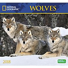 2018 National Geographic Wolves Wall Calendar
