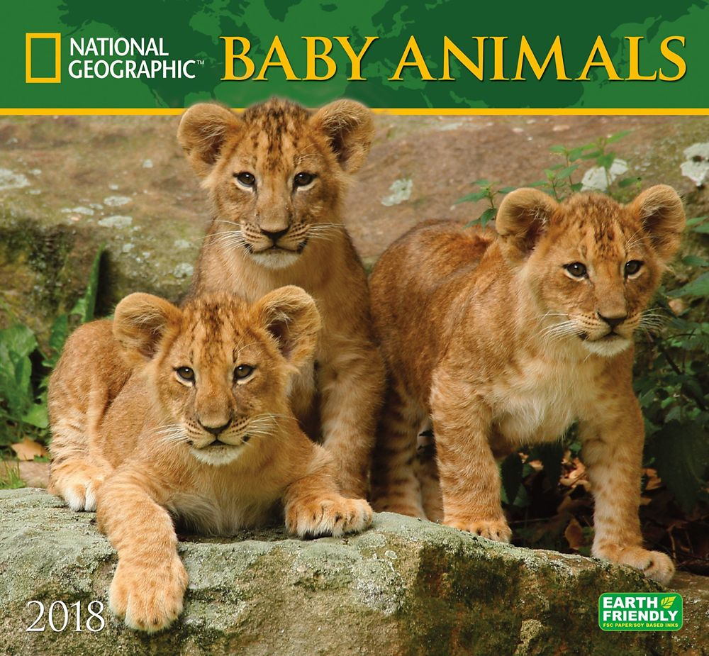 2018 National Geographic Baby Animals Wall Calendar
