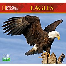 2018 National Geographic Eagles Wall Calendar