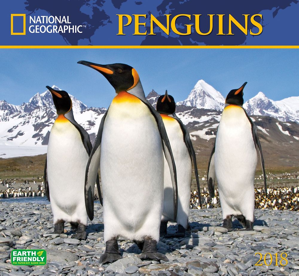 2018 National Geographic Penguins Wall Calendar