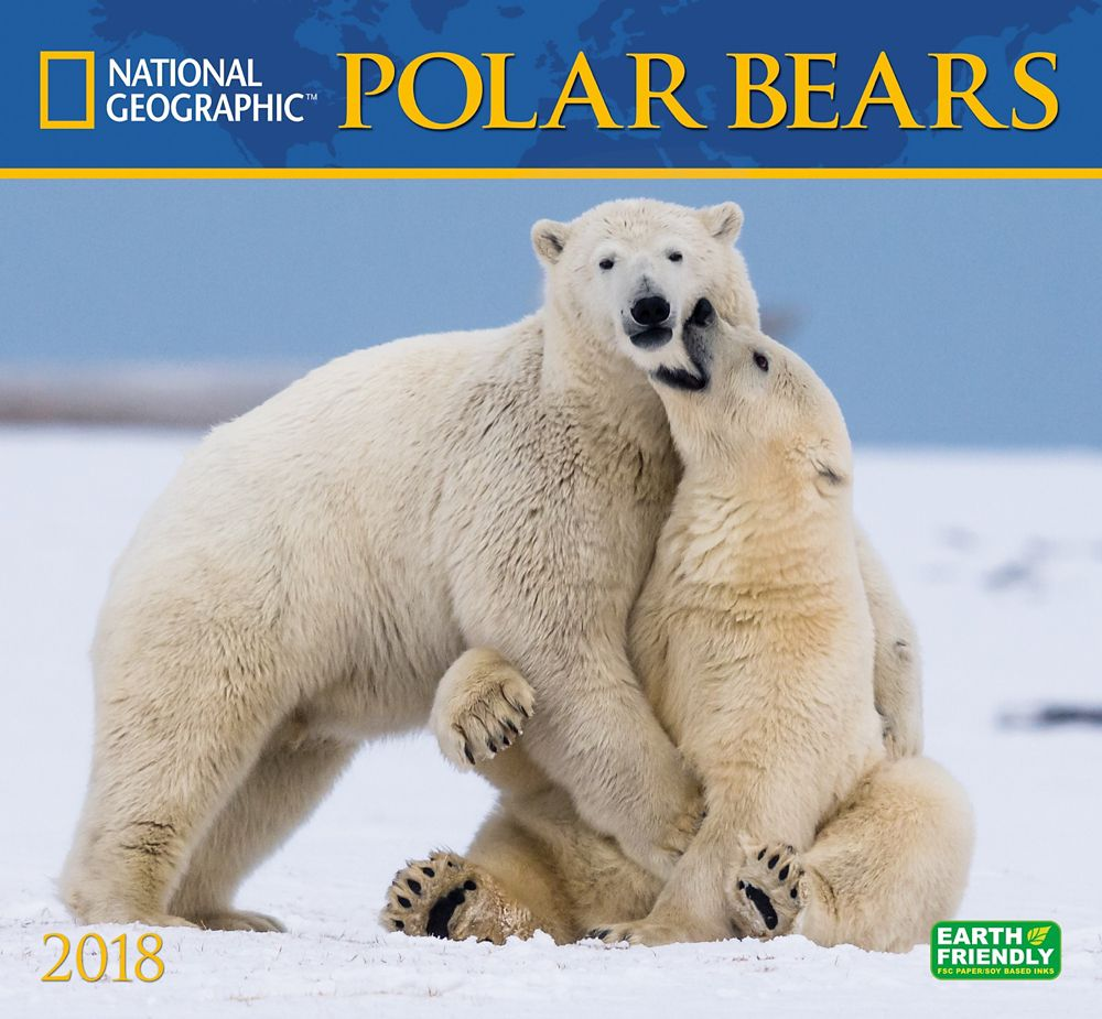 2018 National Geographic Polar Bears Wall Calendar