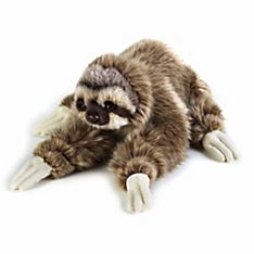 Sloth Plush Toy