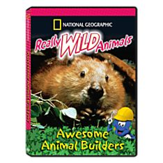 Really Wild Animals: Awesome Animal Builders DVD