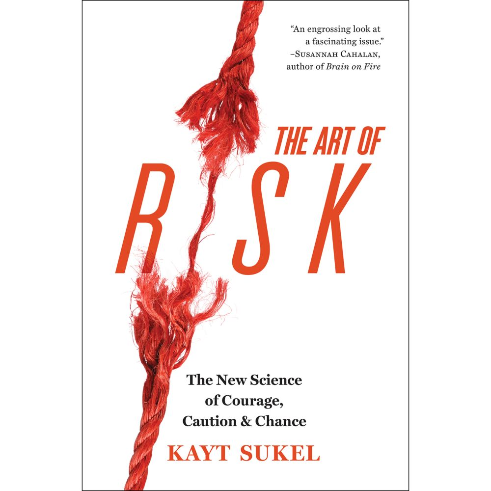 The Art of Risk