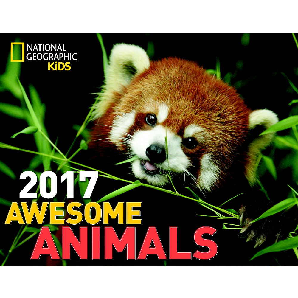 National Geographic 2017 Adult Wall Calendar - National Geographic ...