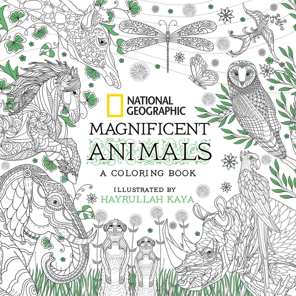 National Geographic Magnificent Animals