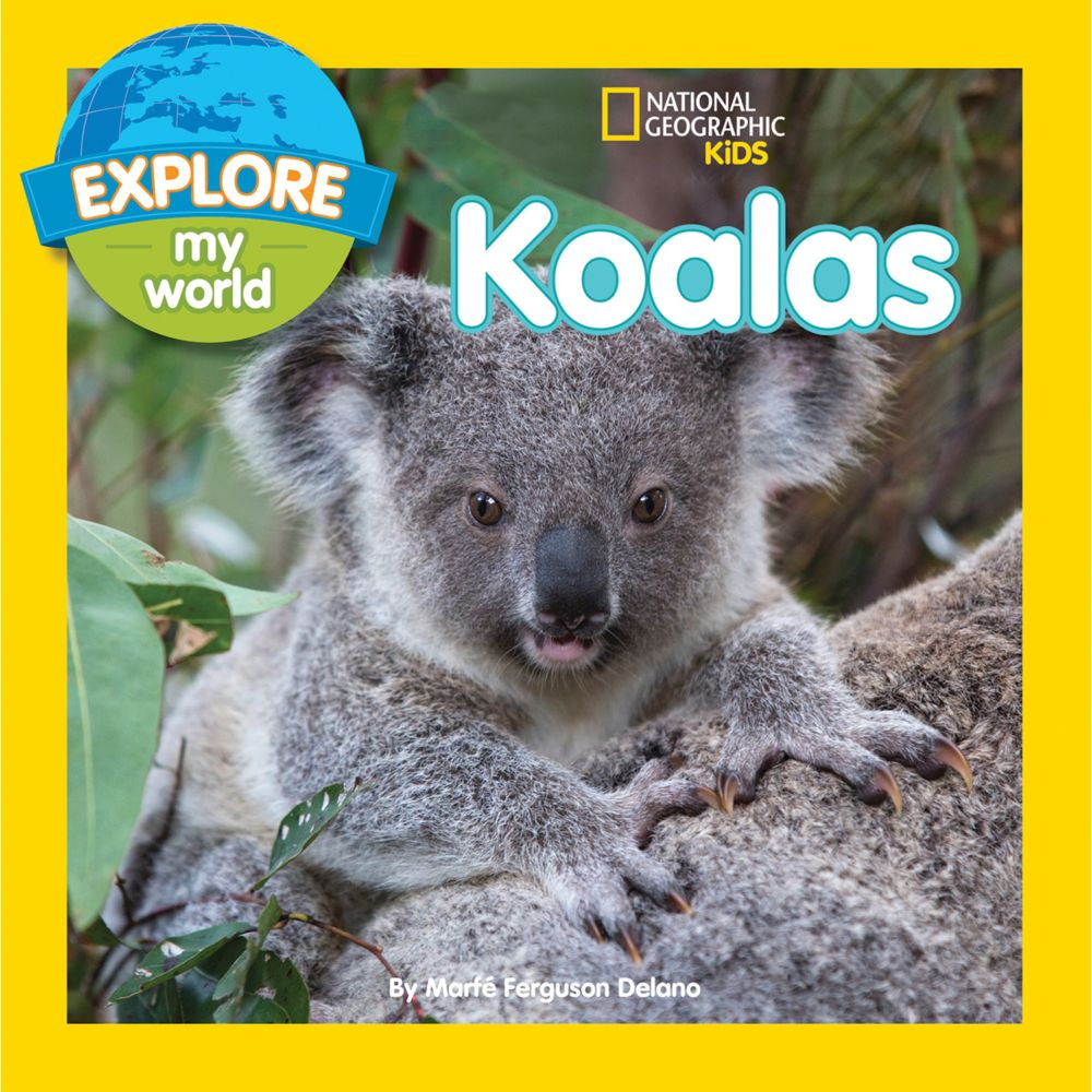 Explore My World: Koalas