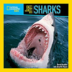 Face to Face with Sharks - Softcover