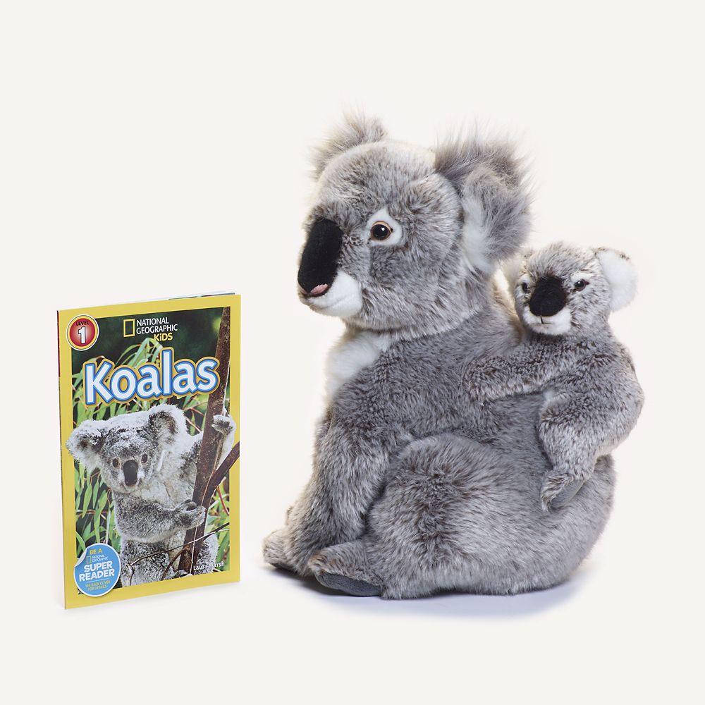 Koala Gift Set