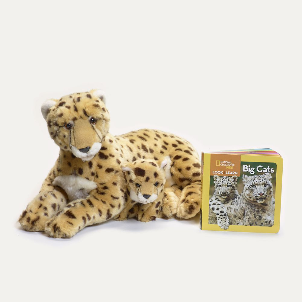 Big Cat Gift Set