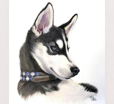 drawing-realistic-animal-fur.jpg