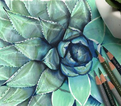 hand-drawn-succulents-using-soft-core-prismacolors_bp3p.jpg