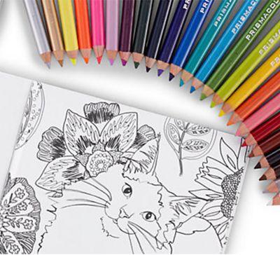 what-inspires-prismacolor.jpg