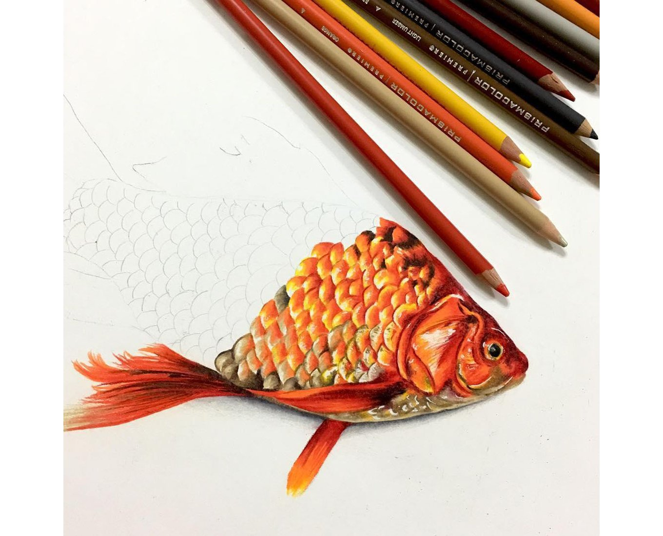 Color blending tips prismacolor