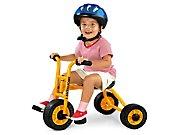 Lakeshore First Trike