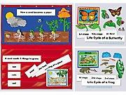 Life Science Pocket Chart Kits- Setof3