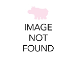 Glass V Bowls