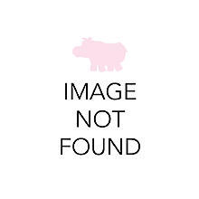 Check out the Garden Bistro Folding Chair for rent