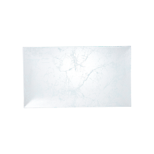 Check out the Glass Marble Platter Rectangle for rent