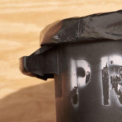 Detail image of Sanitation and Garbage