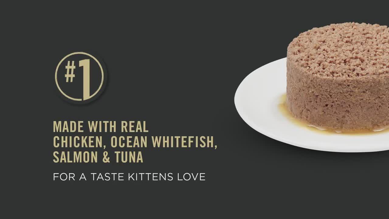 Purina Pro Plan Focus Kitten Food Cat Wet Food Petsmart