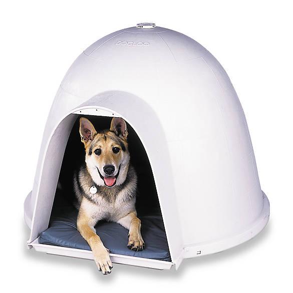 Petmate Dogloo Xt Dog House Dog Houses Pens Petsmart
