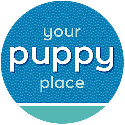 Your Puppy Place