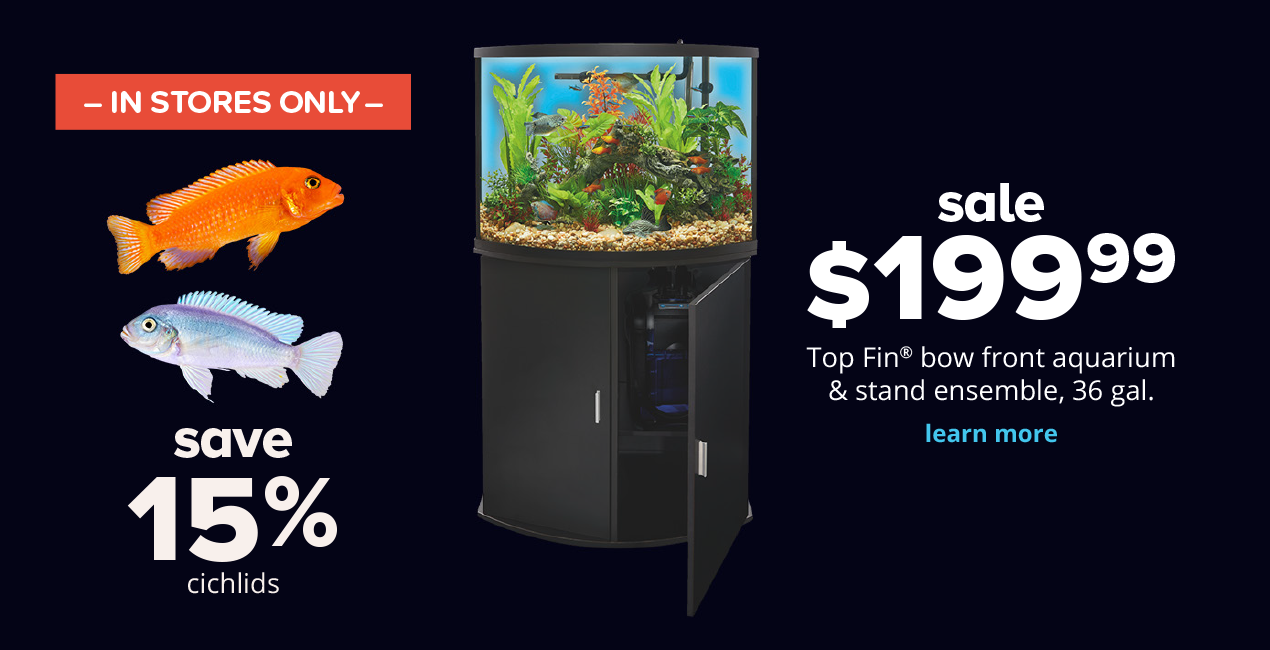 get glowing! sale $199.99 Top Fin® bow front aquarium & stand ensemble, 36 gal. save 15% All cichlids