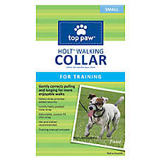 Top Paw® HOLT Walking Dog Collar