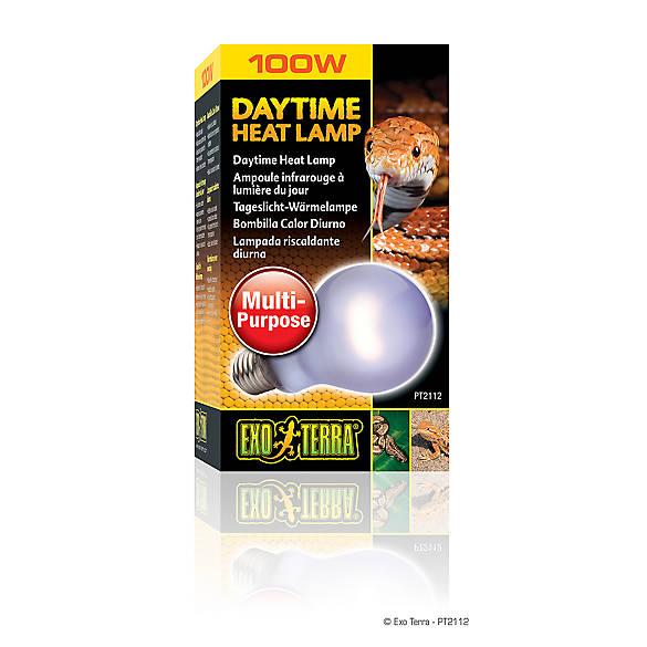 100 Watt EXO-TERRA Night Heat Lamp