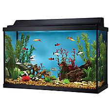 Fish tank starter kits aquarium kits petsmart for 55 gallon fish tank petsmart