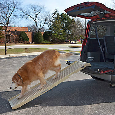 Petstep Folding Pet Ramp Dog Ramps Amp Steps Petsmart